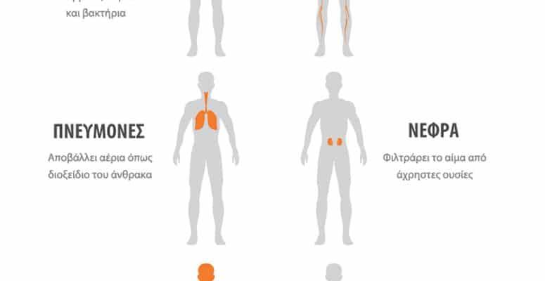 Η αποτοξίνωση συμβάλει στην επούλωση των ιστών